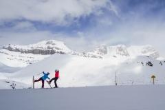 Ski Acrobatics at Lake Louise