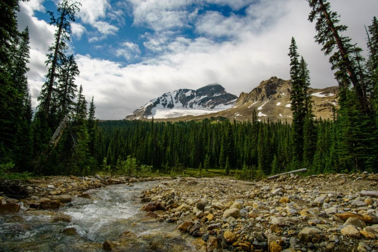 Excellent views in the Yoho Valley