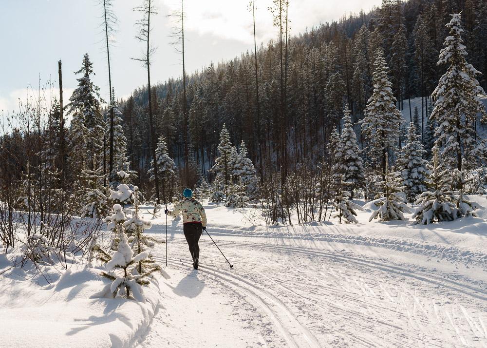 Cross-Country Skiing at Kimberly, BC