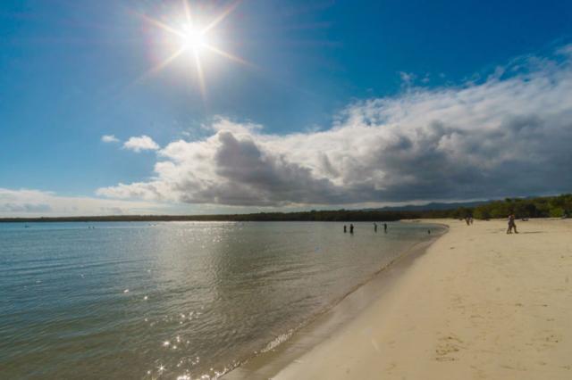 Tortuga Bay Santa Cruz Island Galapagos